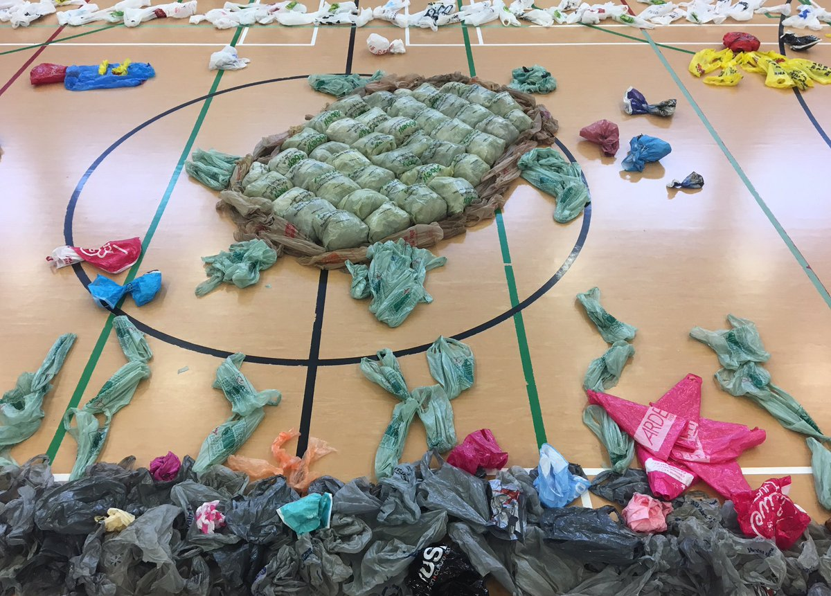 Plastic bag turtle display